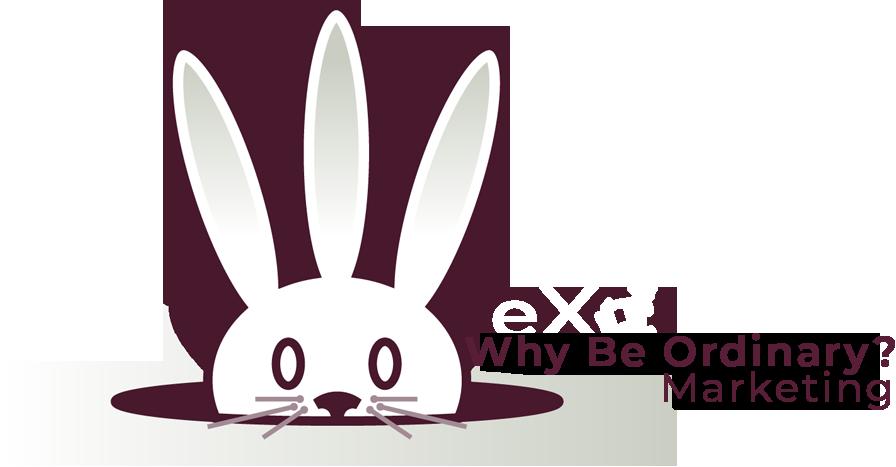 Why Be Ordinary? Marketing